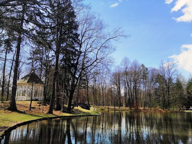 Shot van de bomen en een prieel aan de oever van het meer in jelenia góra, polen.