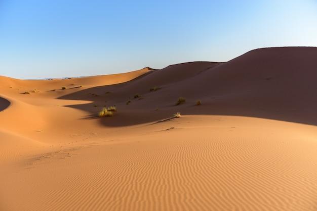 Shot van duinen in de woestijn van de sahara, marokko