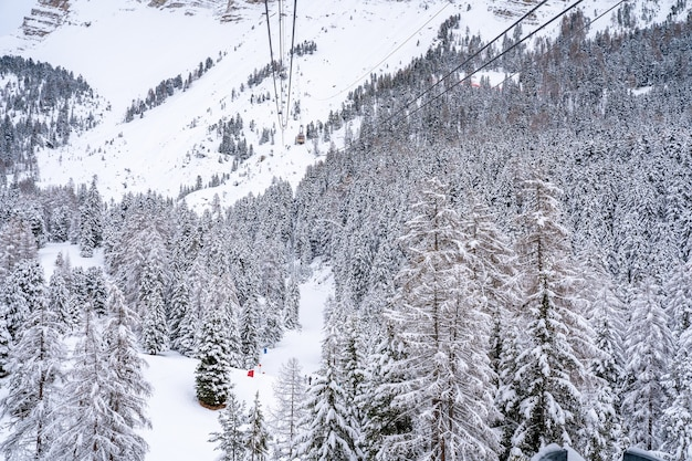 Shot van een kabelbaan over een besneeuwd bos op een berg