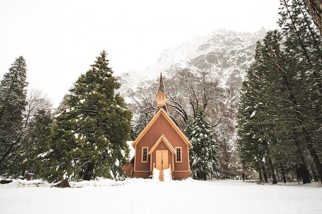 Shot van een kleine houten hut omgeven door sparren gevuld met sneeuw in de buurt van bergen