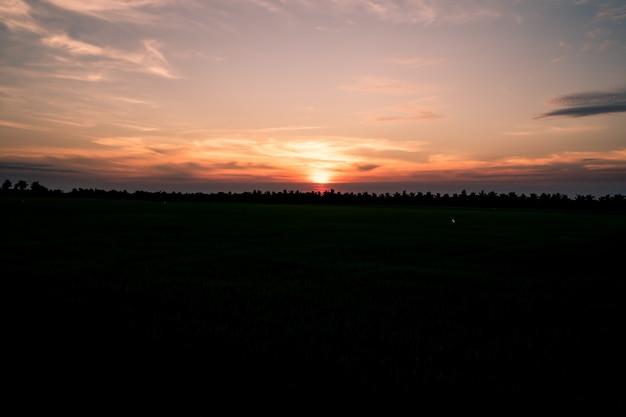 Silhouet fantastische zonsondergang op het veld. dramatische schilderachtige scène