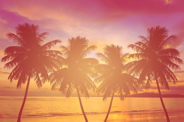 Silhouet palmboom bij zonsondergang