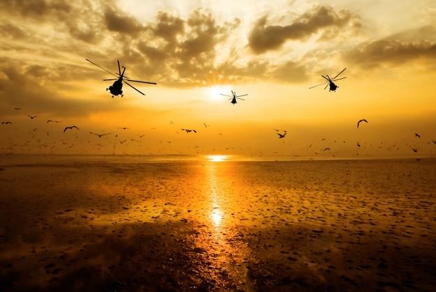 Silhouet van de militaire helikopter die zich in hemel bij zonsondergang en mooie zeemeeuw beweegt