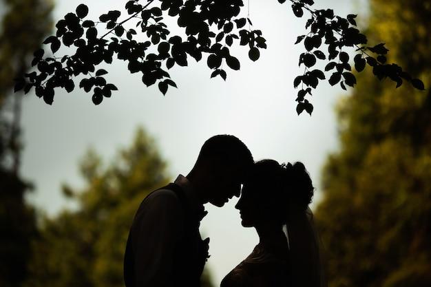 Silhouet van een bruidspaar tegen de achtergrond van de natuur
