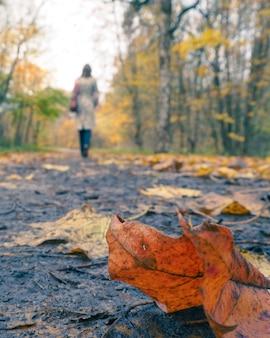 Silhouet van een jonge vrouw die langs een de herfststeeg in het park loopt.