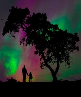 Silhouet van een man met zijn dochter genieten van de nachtelijke hemel onder een boom