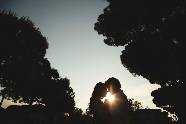 Silhouet van een verliefde paar in de natuur