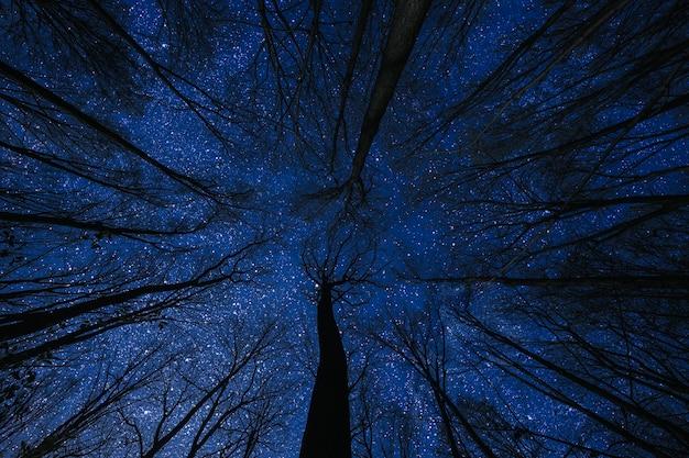 Silhouet van een vliegende goth-santa claus tegen het oppervlak van de nachtelijke hemel. elementen van deze afbeelding geleverd door nasa