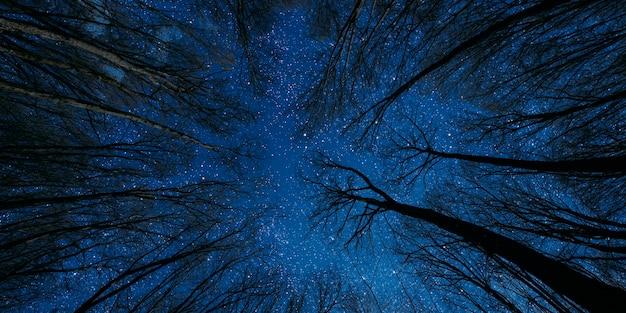 Silhouet van een vliegende goth-santa claus tegen het oppervlak van de nachtelijke hemel.