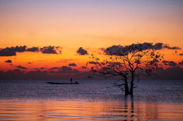 Silhouet van eenzame mangroveboom met vissersboot in meer