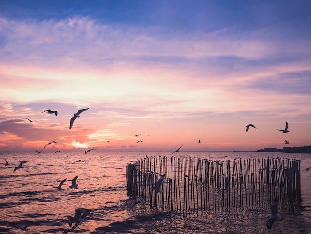 Silhouet van houten hout dat voor zeemeeuwvogels wordt geplaatst die zich in hartvorm op zee over schemertijd bevinden