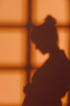 Silhouet van jonge vrouw thuis met vensterschaduwen