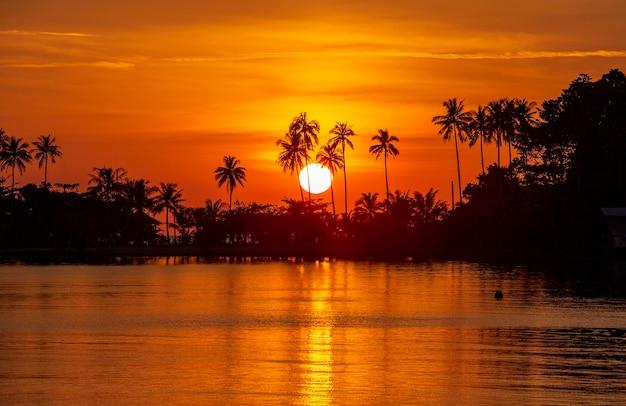 Silhouet van kokospalmen tijdens zonsondergang naast het zeewater op het eiland in thailand. natuur en reizen concept. zon, rode lucht, palmbomen en zeewater