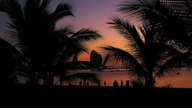 Silhouet van mensen op tropisch strand bij zonsondergang - toeristen genieten van tijd in de zomervakantie - reizen, vakantie en landschap concept - focus op palmboom. hainan, sanya.