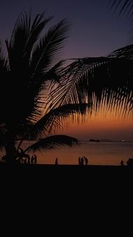 Silhouet van mensen op tropisch strand bij zonsondergang - toeristen genieten van tijd in zomervakantie - reizen, vakantie en landschap concept - focus op palmboom - verticaal