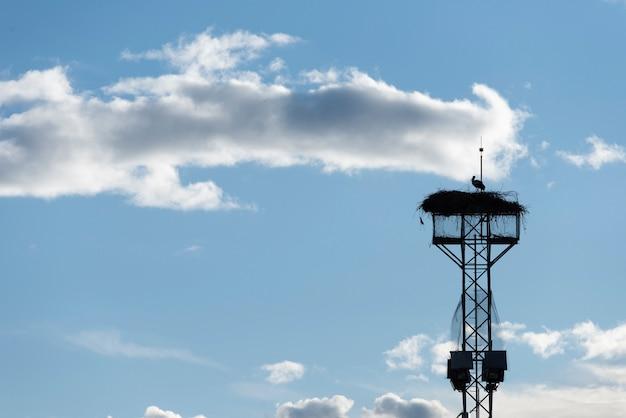 Silhouet van ooievaar met nest in een toren met blauwe hemelachtergrond