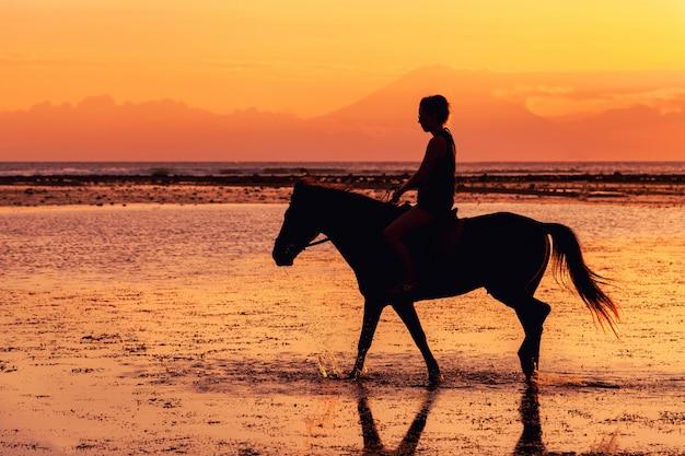 Silhouet van persoon rijpaard op strand