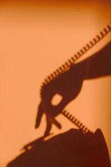 Silhouet van vrouw met behulp van een telefoon