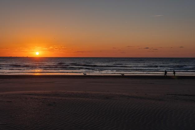 Silhouete van paar en honden. mooi zonsonderganglandschap bij de noordzee met oranje hemel en ontzagwekkende zon gouden bezinning over golven in. geweldig uitzicht op de zomer zonsondergang op het strand.