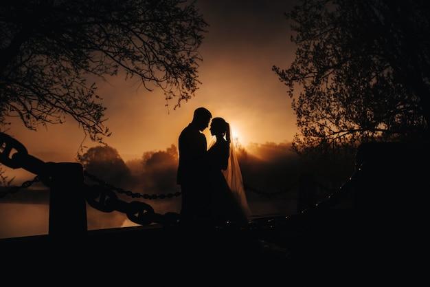 Silhouetten van een paar verliefd bij zonsondergang op de natuur