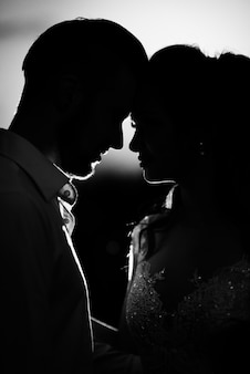 Silhouetten van het jonge paar van de bruid en bruidegom in de achtergrondverlichting
