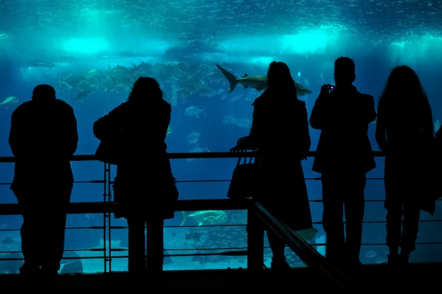 Silhouetten van mensen op de achtergrond van een enorm aquarium met inwoners van de zee