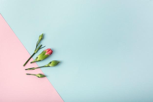 Simplistische bloemen en achtergrond met kopie ruimte