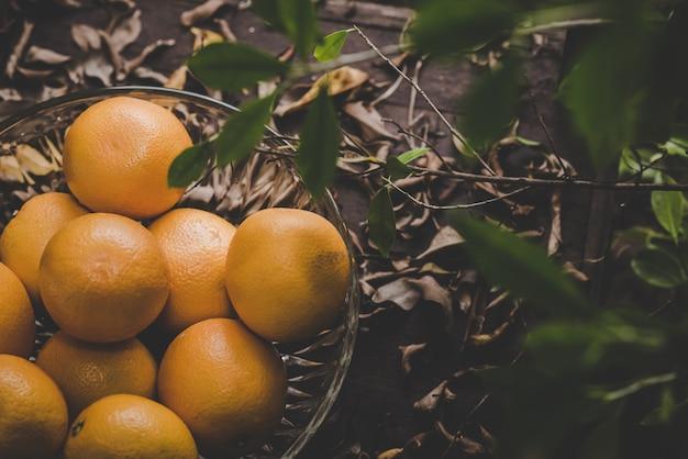 Sinaasappelen groep vers geplukt en sectie in een mandje