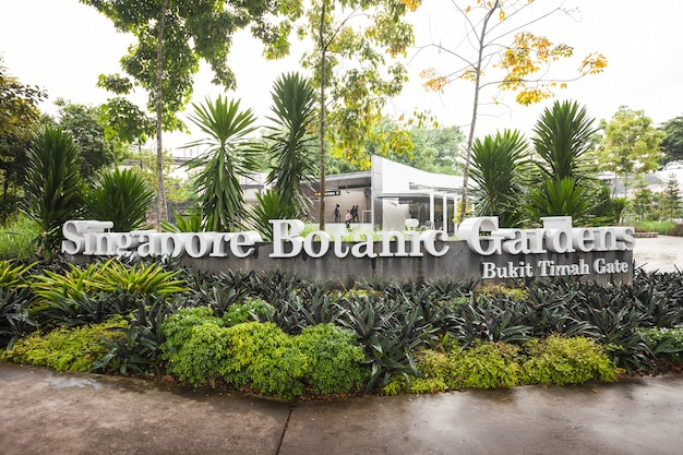 Singapore - 17 oktober 2014: de singapore botanic gardens is een botanische tuin van 74 hectare in singapore.