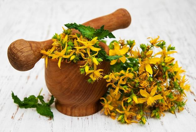 Sint-janskruid bloemen