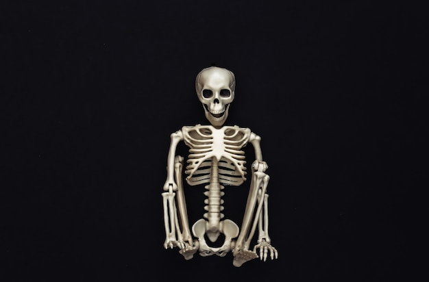 Skelet op zwart. halloween-decoratie, eng thema