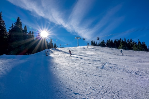 Skiërs gaan een brede helling af. bomen, zon en skilift