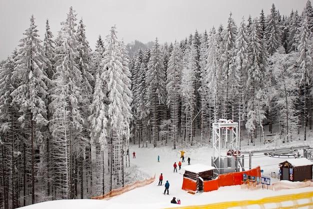 Skipiste in het besneeuwde bos. oekraïne, karpaten