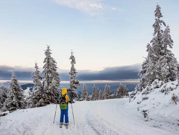 Skitour vrouw skiër op de top van de bergen kopieer ruimte