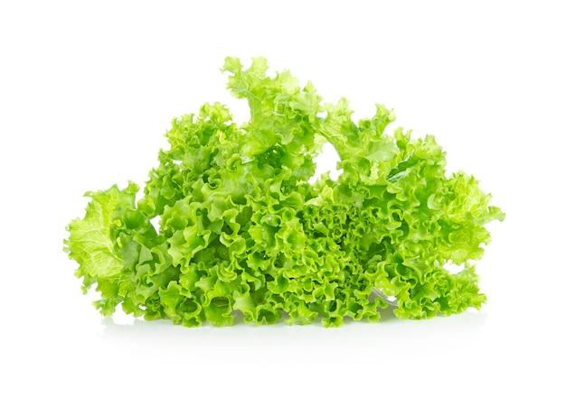 Sla geïsoleerd op een witte achtergrond. salade blad.