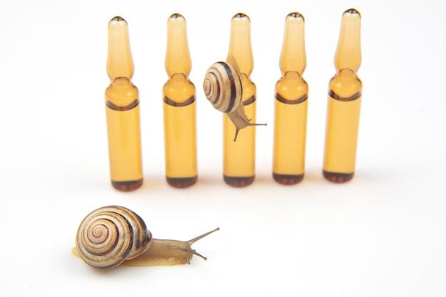 Slak en medicinale ampullen voor injecties. weekdieren en ongewervelde dieren. delicatesse vlees en gastronomische gerechten.