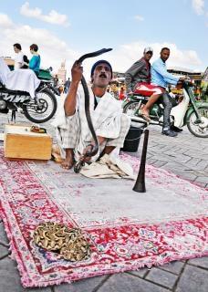 Slangenbezweerder straat