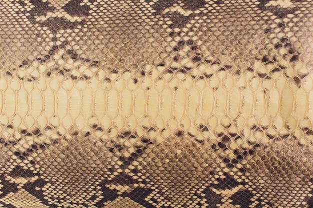 Slangenhuid, kan als patroonleer worden gebruikt.