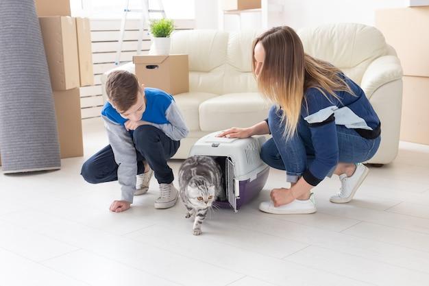 Slanke jonge moeder en zoontje lanceren hun prachtige grijze scottish fold-kat in hun nieuwe