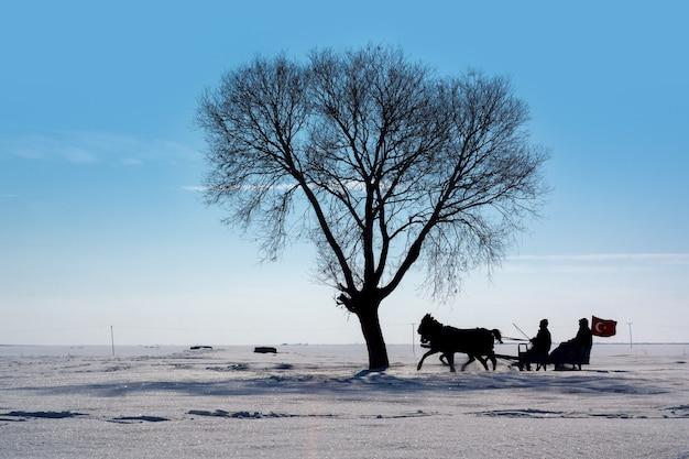 Slee getrokken door een paard in arpacay village. traditioneel turks winterplezier. kars, turkije