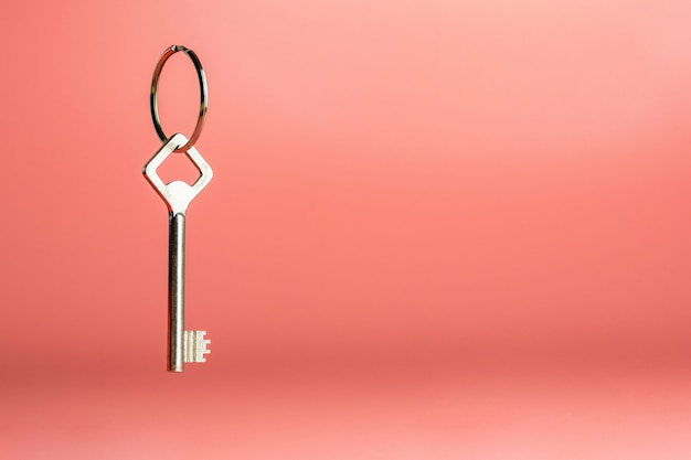 Sleutel op sleutelring, exemplaarruimte, antidiefconcept veiligheid