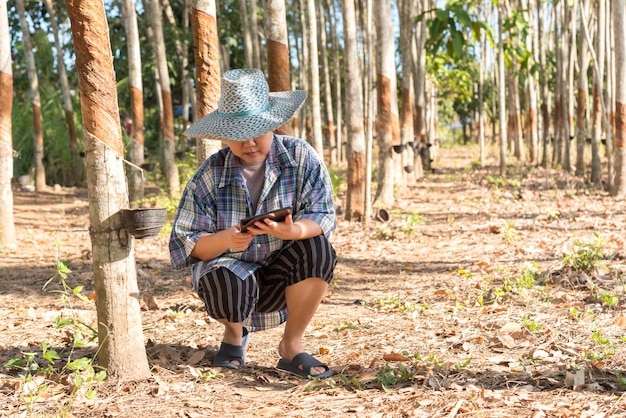 Slimme boer landbouwer rubberboom plantage