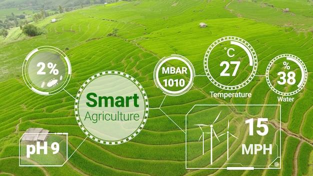 Slimme digitale landbouwtechnologie door futuristische verzameling van sensorgegevens