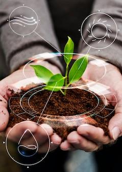 Slimme landbouw iot met hand aanplant boomachtergrond