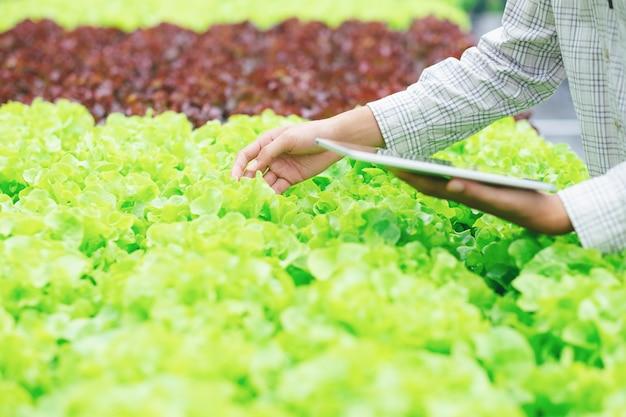 Slimme landbouw met behulp van moderne technologieën in de landbouw.