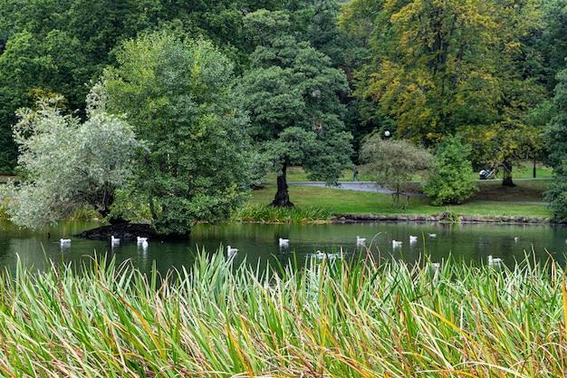 Slottsskogen park göteborg zweden in september