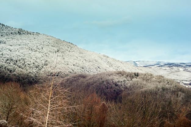 Sloveense bergen bedekt met sneeuw