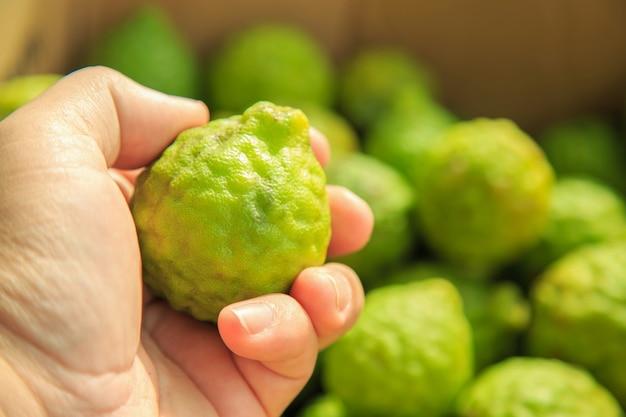 Sluit een verse bergamot in de hand van een man, bergamot is een van de aziatische ingrediënten.
