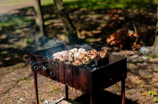 Sluit omhoog bij het koken van barbecue in aard