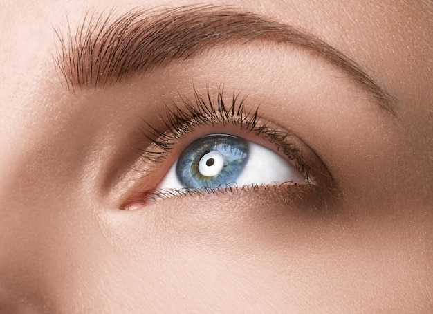 Sluit omhoog blauw oog met make-up